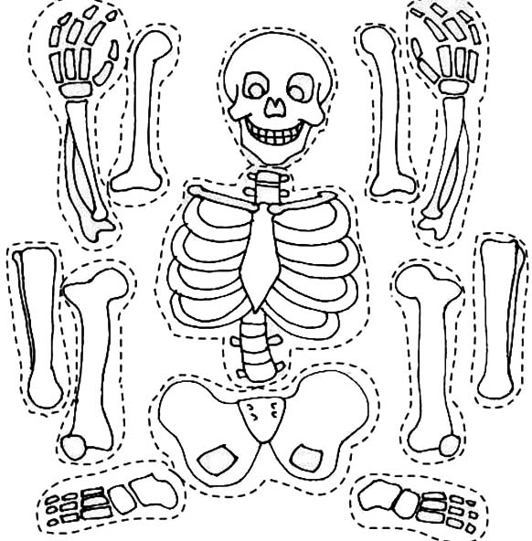 Coloring Pictures Of Skeleton 90