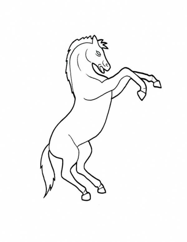 Picture of horse rearing in horses coloring page