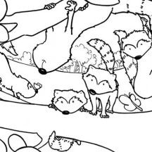 A Group of Raccoon Coloring Page
