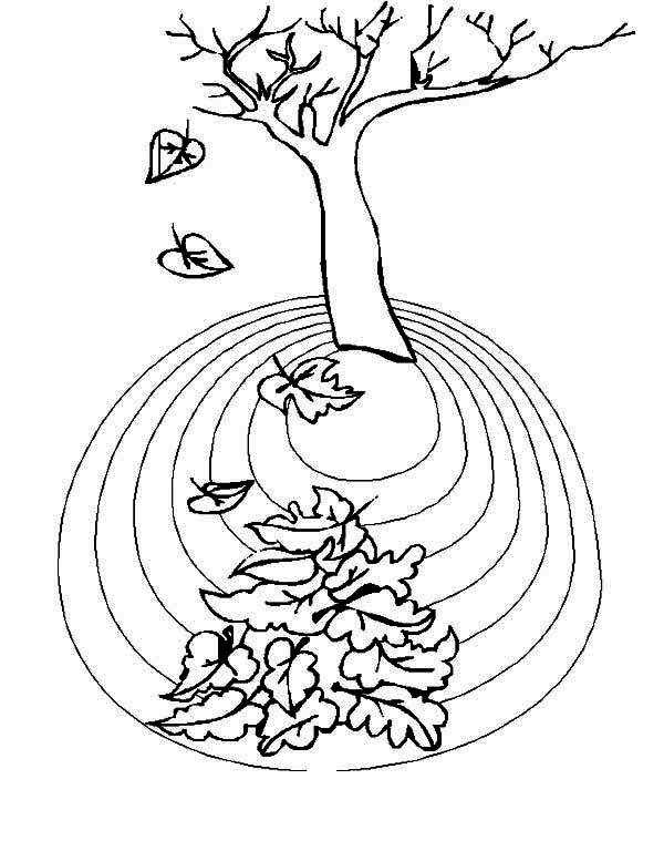 Area of Fall Leaf Coloring Page