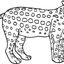 Awesome Cheetah Coloring Page