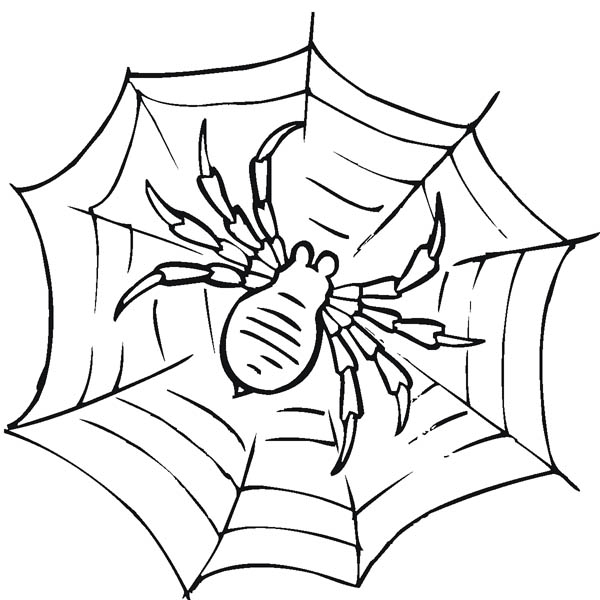 Miss Spider Happy Fall Leaf Coloring Page | Spider coloring page ... | 600x600