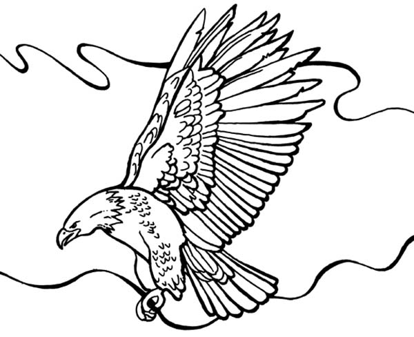 Bald Eagle Flying Around Coloring Page