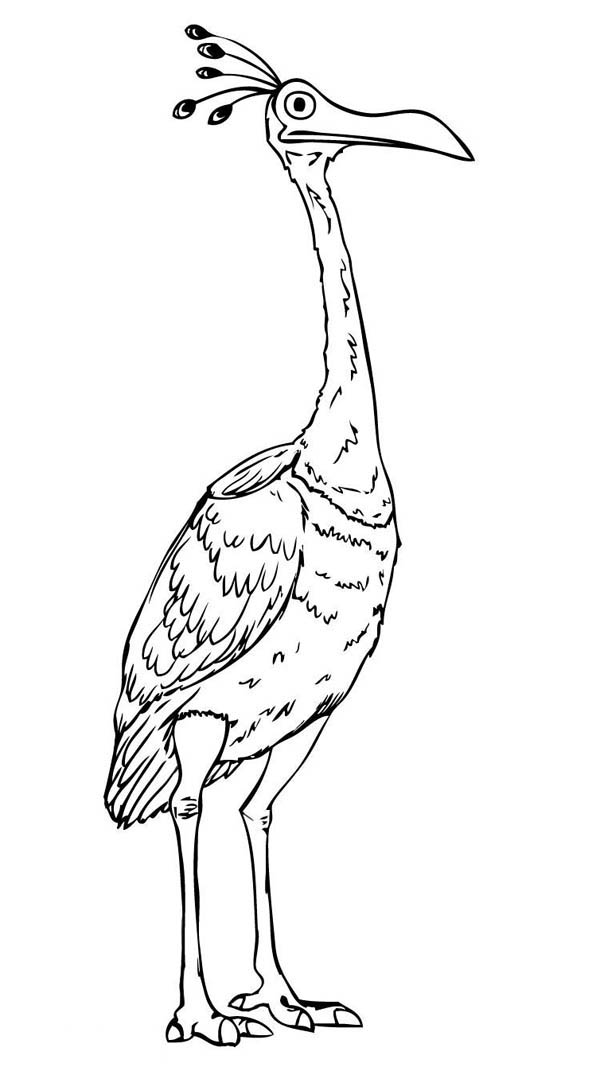 Beautiful Disney Up Character Kevin the Bird Coloring Page