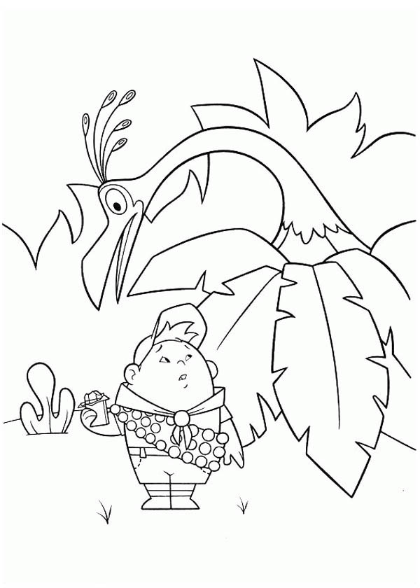 Seagulls Free Printable Coloring Pages For Girls And Boys | 840x600