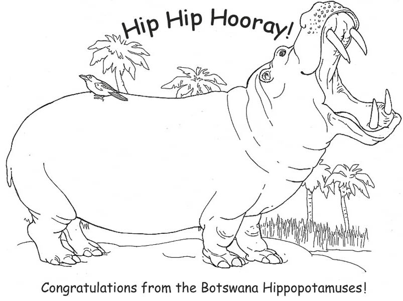 Botswana Hippopotamuses in Hippo Coloring Page