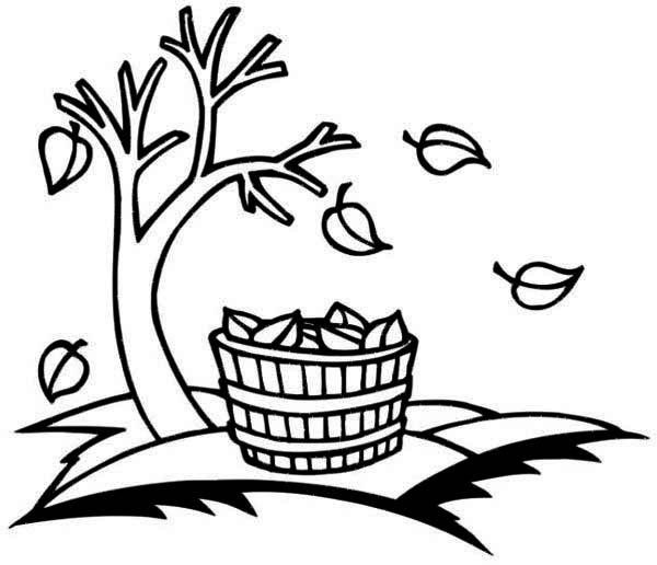 Bucket Full of Fall Leaf Coloring Page
