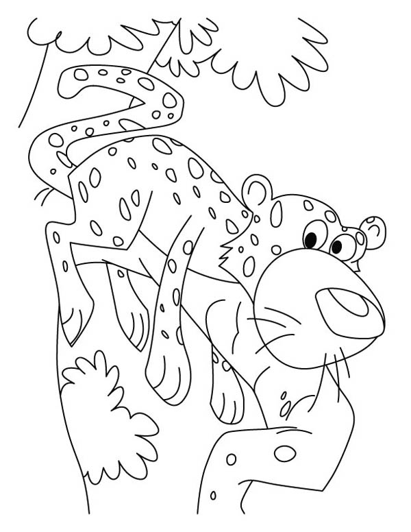 Cheetah Came Down from Tree Coloring Page