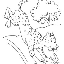 Cheetah Jump from Tree Coloring Page