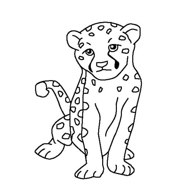 Cute Baby Cheetah Coloring Page