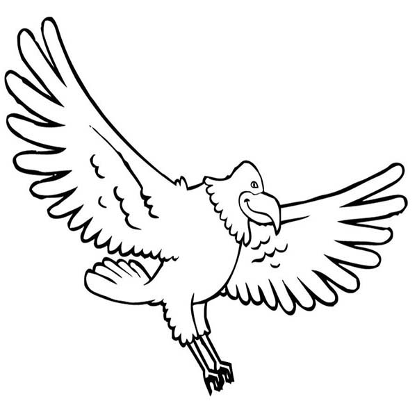 Cute Bald Eagle Coloring Page
