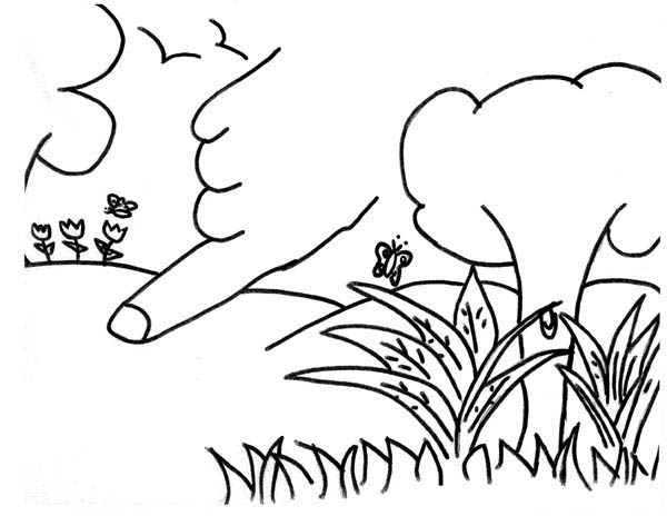 Drawing Of Garden Of Eden Coloring Page Netart