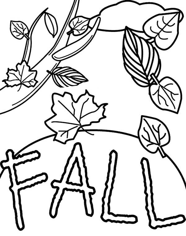 Fall Leaf Picture Coloring Page