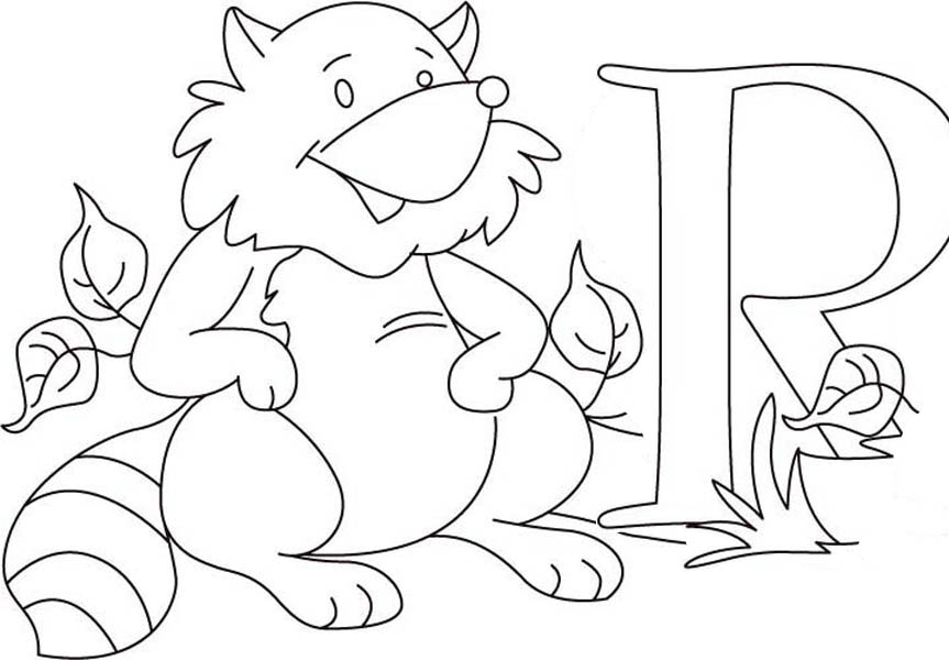 Fat Raccoon Coloring Page