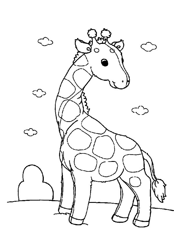 Funny Giraffe Coloring Page