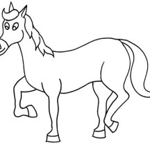 Funny Horse in Horses Coloring Page