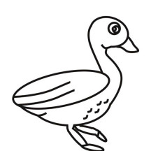 G is for Goose Coloring Page