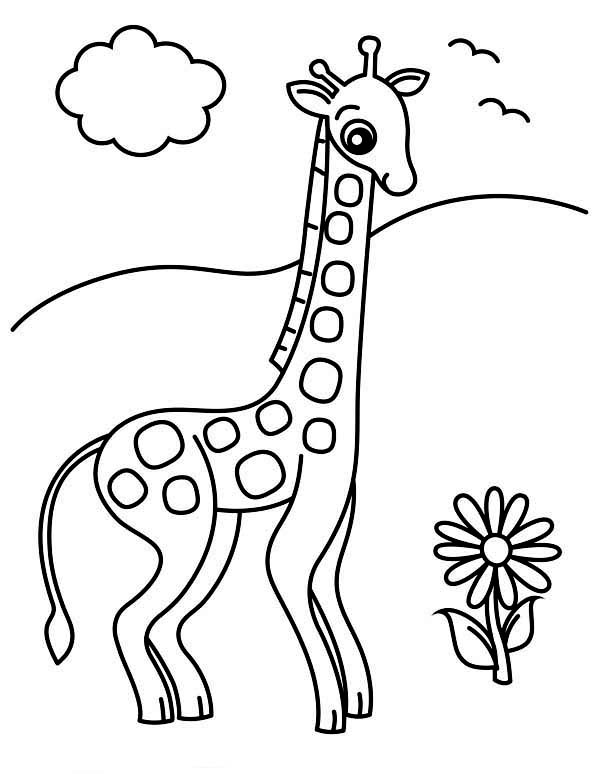 Giraffe and Flower Coloring Page