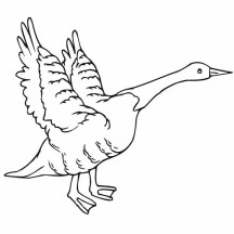 Goose Flying Coloring Page
