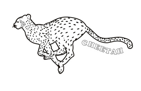 Great Cheetah Picture Coloring Page