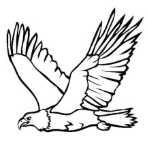 Great Flying Bald Eagle Coloring Page