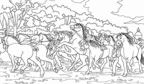 Group of Horses Coloring Page