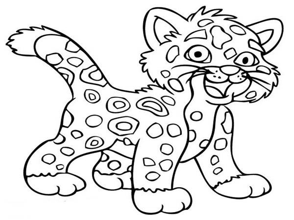 Little Baby Cheetah Coloring Page