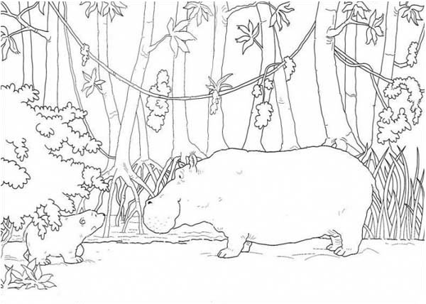 Little Bear Meet Hippo Coloring Page