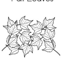 Maple Tree Fall Leaves in Fall Leaf Coloring Page