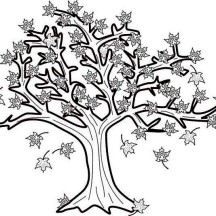 Maple Tree in Fall Leaf Coloring Page