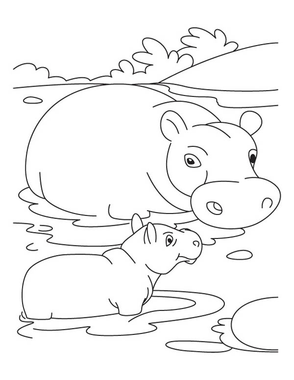Mother Hippo and Baby in the Swamp Coloring Page NetArt