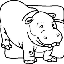 Picture of Hippo Coloring Page