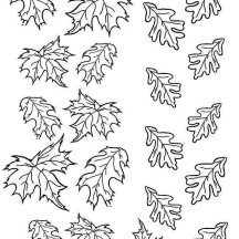 Picture of Maple Fall Leaf Coloring Page