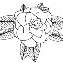 Rose Flower from Top Coloring Page