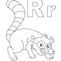Smiling Raccoon Coloring Page