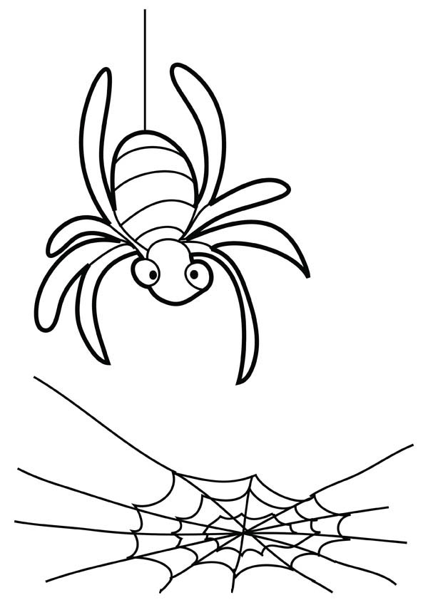 Spider Came Down to His Spider Web Coloring Page