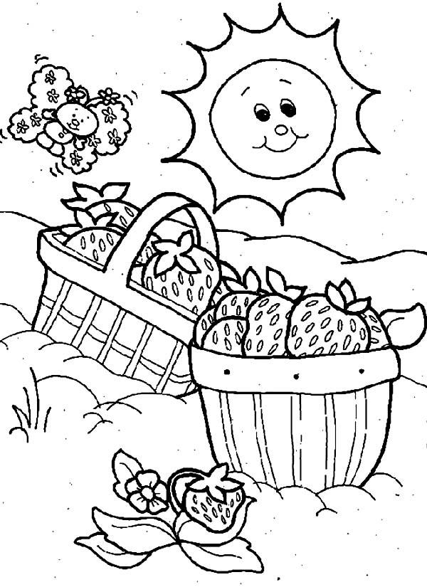 Strawberry Shortcake Basket for Picnic Coloring Page NetArt