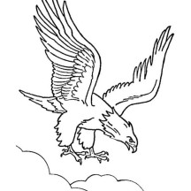 The Bald Eagle Coloring Page
