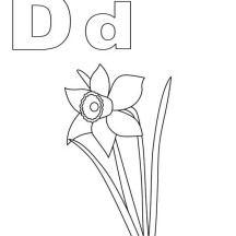 Alphabet D is for Daffodil Coloring Page
