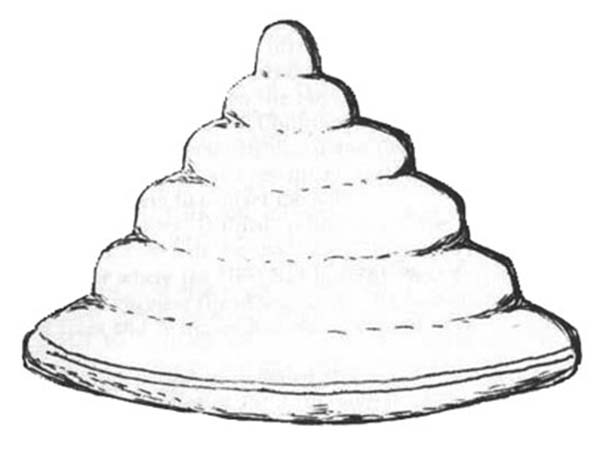 Beehive Image Coloring Page