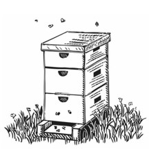 Box Shaped Beehive Coloring Page