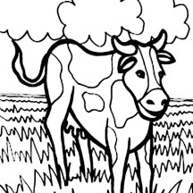 Cow in the Meadow Coloring Page