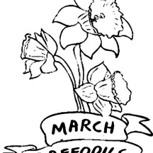 Daffodil Flower in March Coloring Page