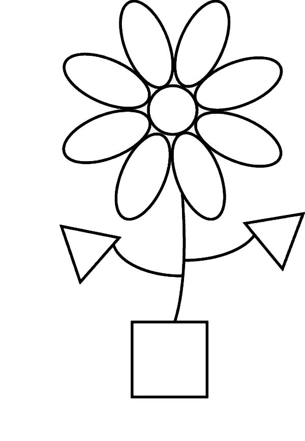Flower Shapes Coloring Page NetArt