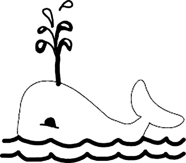 Killer Whale Picture Coloring Page