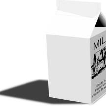 Regular Milk Carton Coloring Page