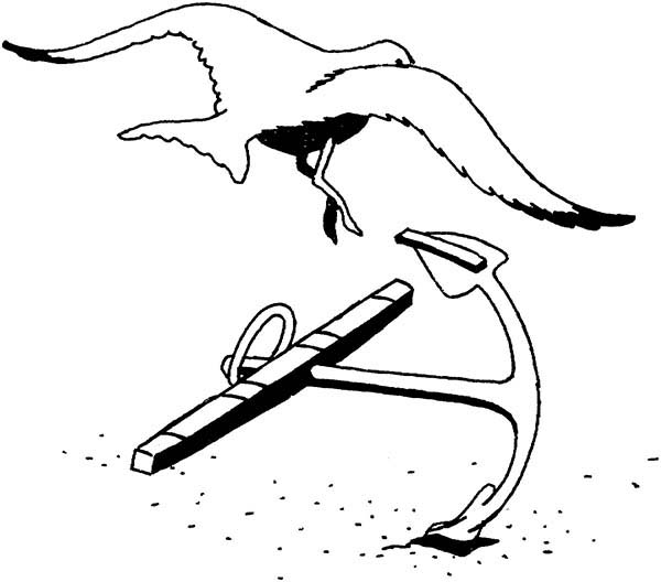 Seagull Landing on an Anchor Coloring Page
