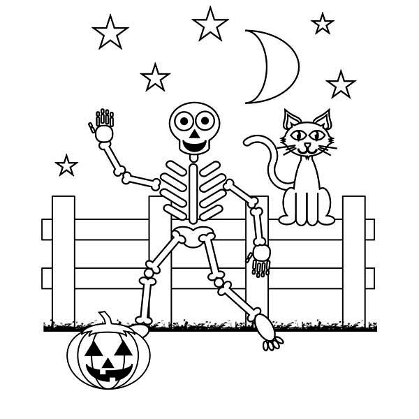 Skeleton and a Cat at Night with a Pumpkin Coloring Page