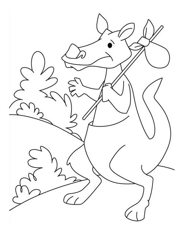 Travelling Kangaroo Coloring Page