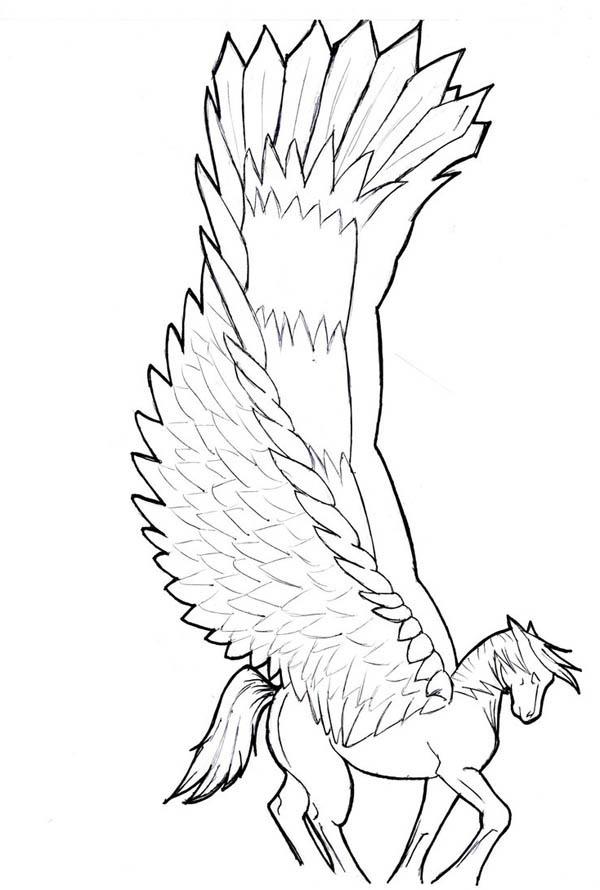Wide Winged Pegasus Coloring Page - NetArt